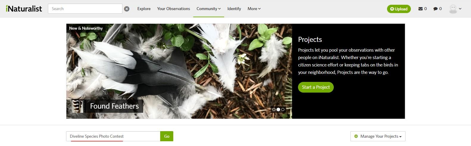 Find Diveline Species Photo Contest